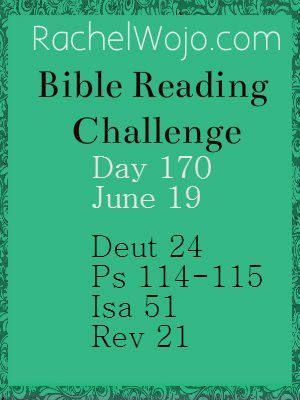 bible reading challenge day 170