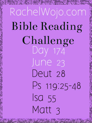 bible reading challenge day 174