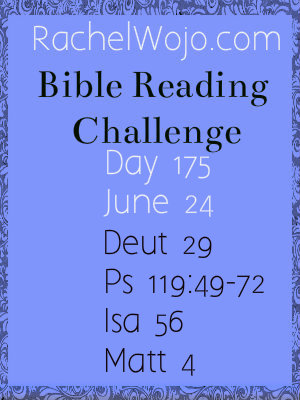 bible reading challenge day 175