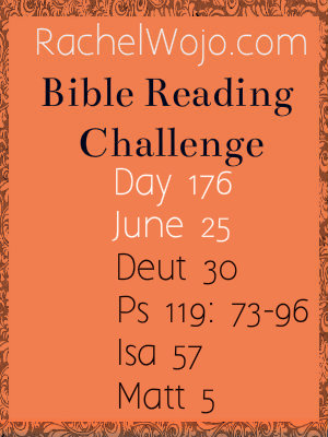 bible reading challenge day 176