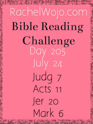 bible reading challenge day 205