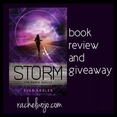 storm book review