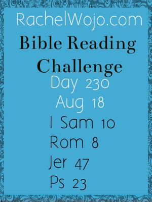 biblereadingchallenge_day230