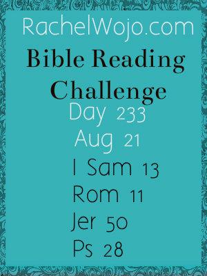 biblereadingchallenge_day233