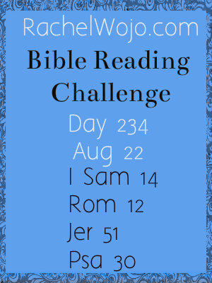 bible reading challenge day 234
