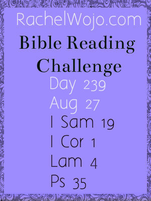 bible reading challenge day 239