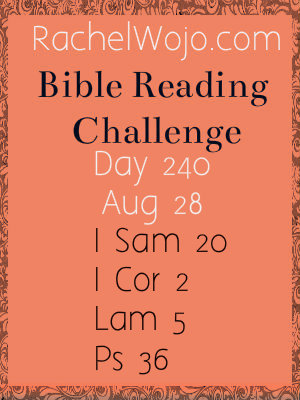 bible reading challenge day 240