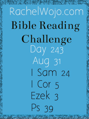 bible reading challenge day 243
