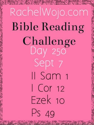 bible reading challenge day 250