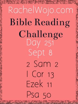 bible reading challenge day 251