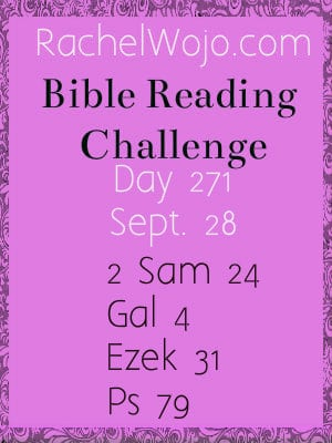 Bible Reading Challenge Day 271
