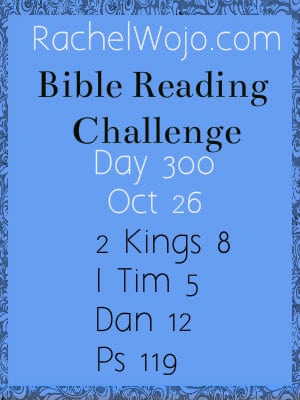 bible reading challenge day 300