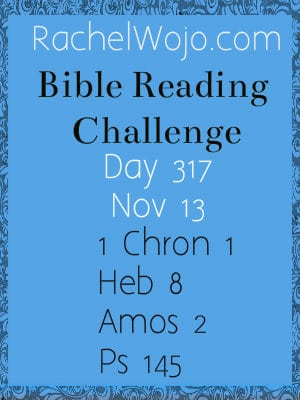 bible reading challenge day 317