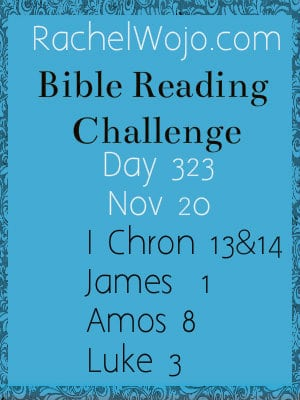Bible Reading Challenge Day 323