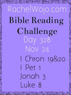 Bible Reading Challenge Day 328