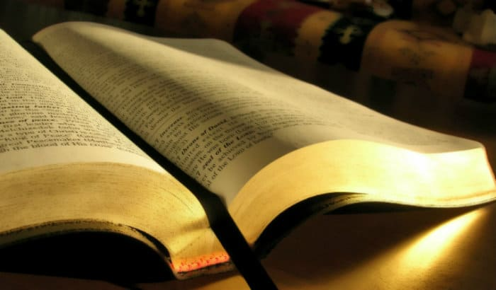 Bible Reading Challenge Check-In