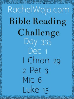 Bible Reading Challenge Day 335