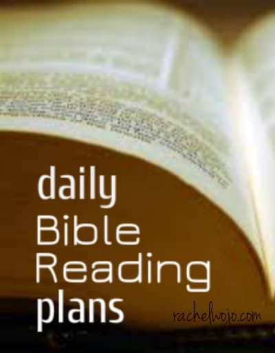 picture relating to Printable Daily Devotions for Youth referred to as Each day Bible Reading through System -