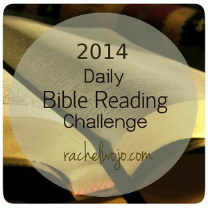 daily-Bible-reading-challenge300