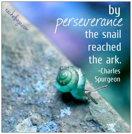 by perseverance