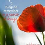 things to remember in a seaseon of change