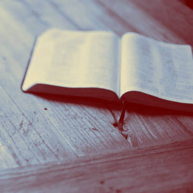 7 Creative Ways To Use Bible Studies