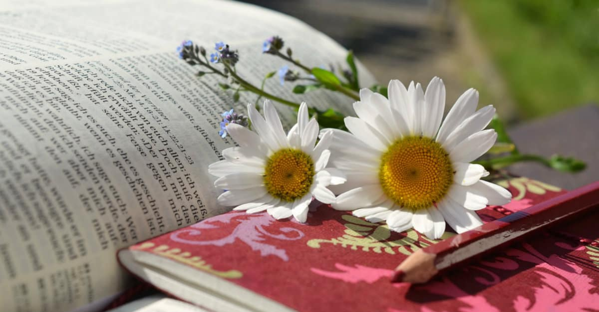 What is a bible journal rachelwojo com