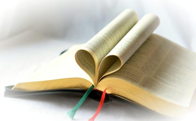 Trusting God Bible Reading Wrap-up