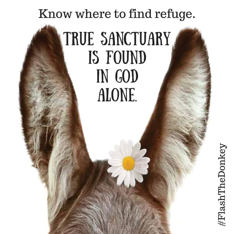 Do you find yourself needing to take refuge?