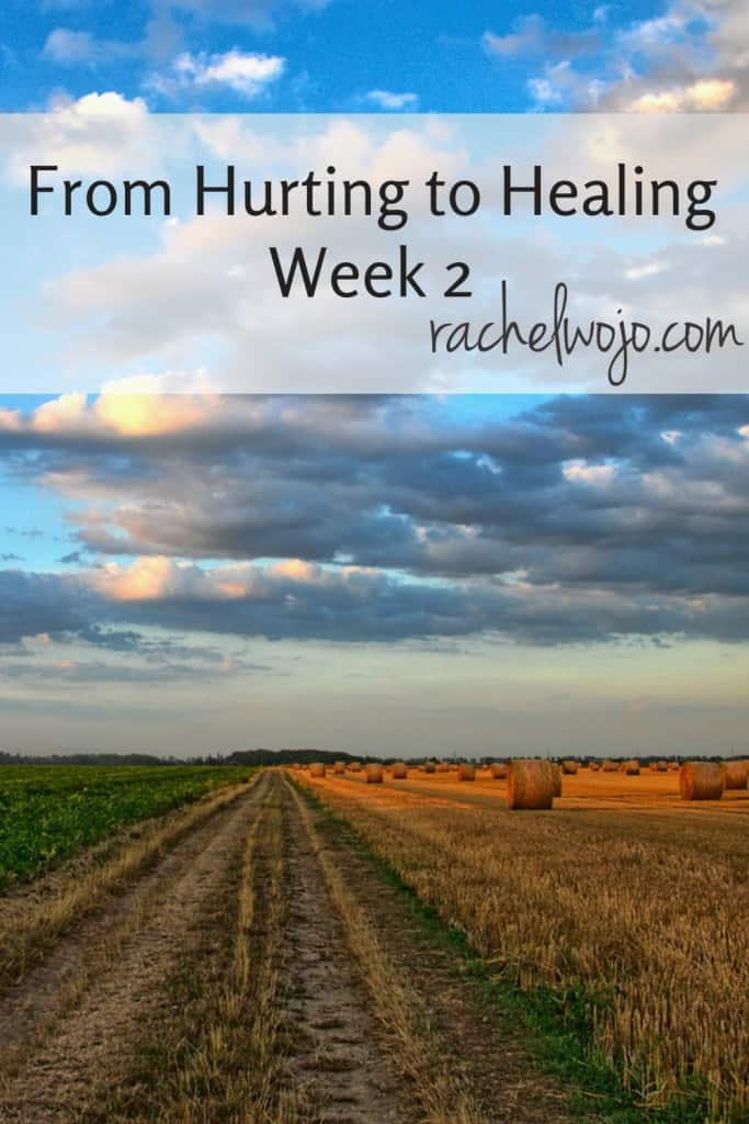 Have you found yourself in a painful place? Ready to  take steps toward the healing process? This daily Bible study will help you do just that!