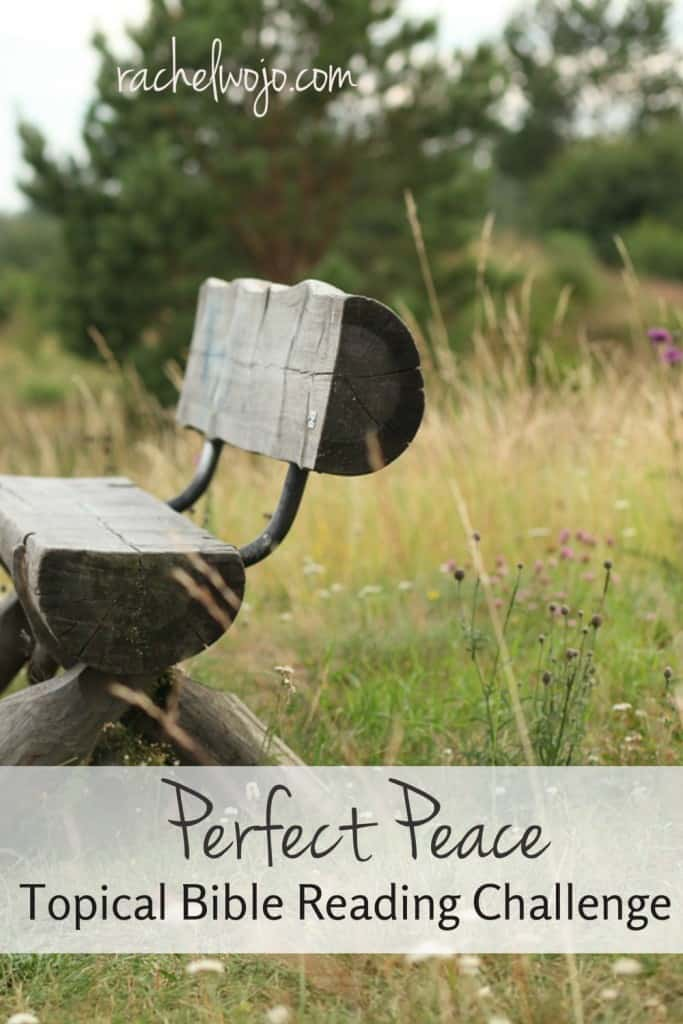 All you really want is a little peace? Jesus wants you to have more. Come and read about the peace beyond human comprehension! #onemorestep #perfectpeace #biblereading