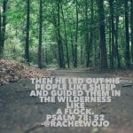 Whatever your wilderness looks like, God will lead you out!