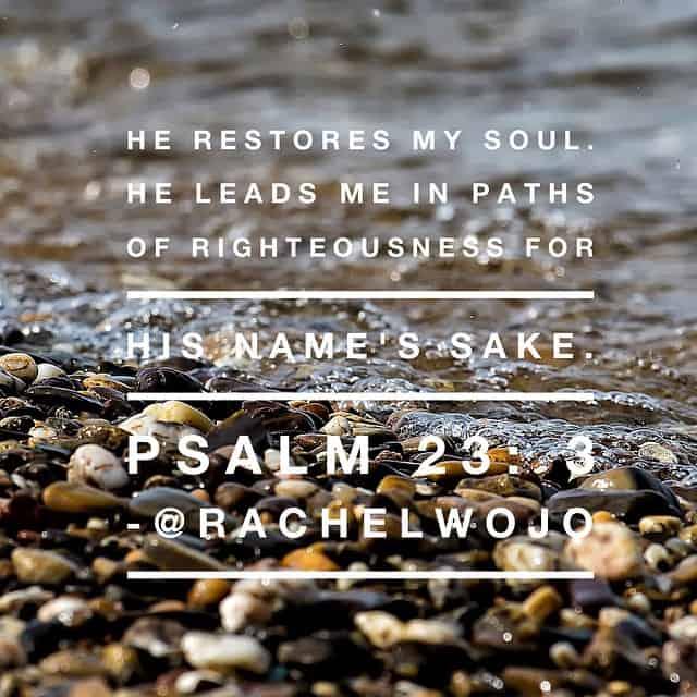 psalm233