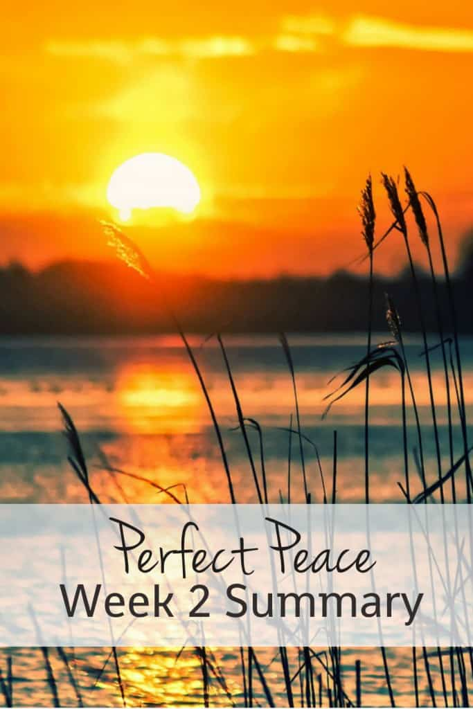 Searching for peace? Join the daily #perfectpeace Bible reading! Check out the summary for this week's reading...