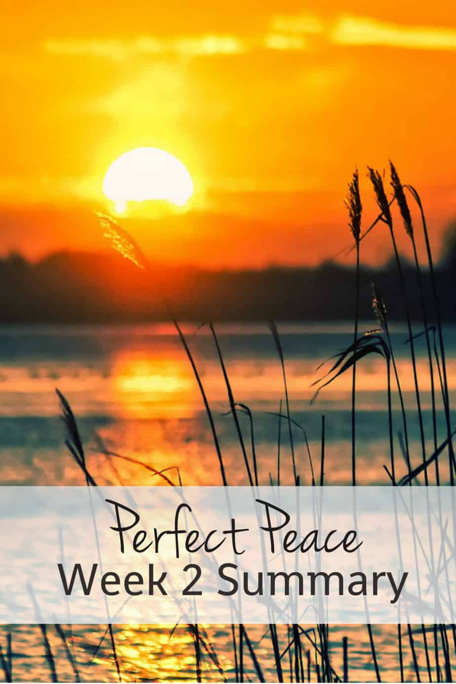 Perfect Peace Bible Reading Summary Week 2 Rachelwojo