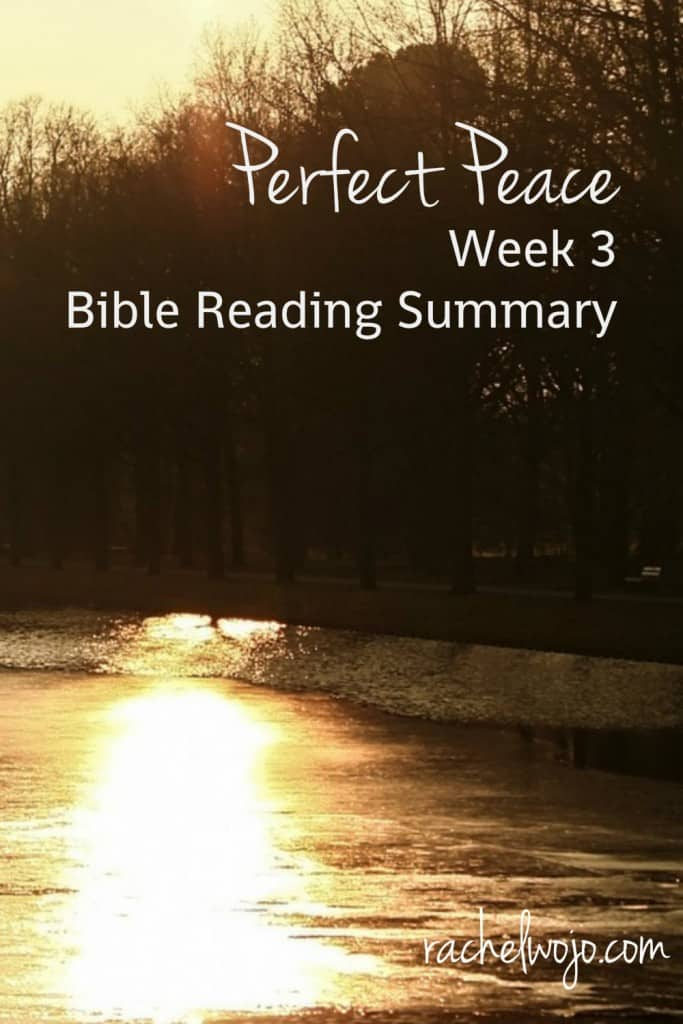 Which passages brought peace to your heart this week? Or were you like me and felt some conviction?  Don't miss the Bible reading summary for week 3 of Perfect Peace, a topical Bible reading plan. Just take #onemorestep to grow your faith!