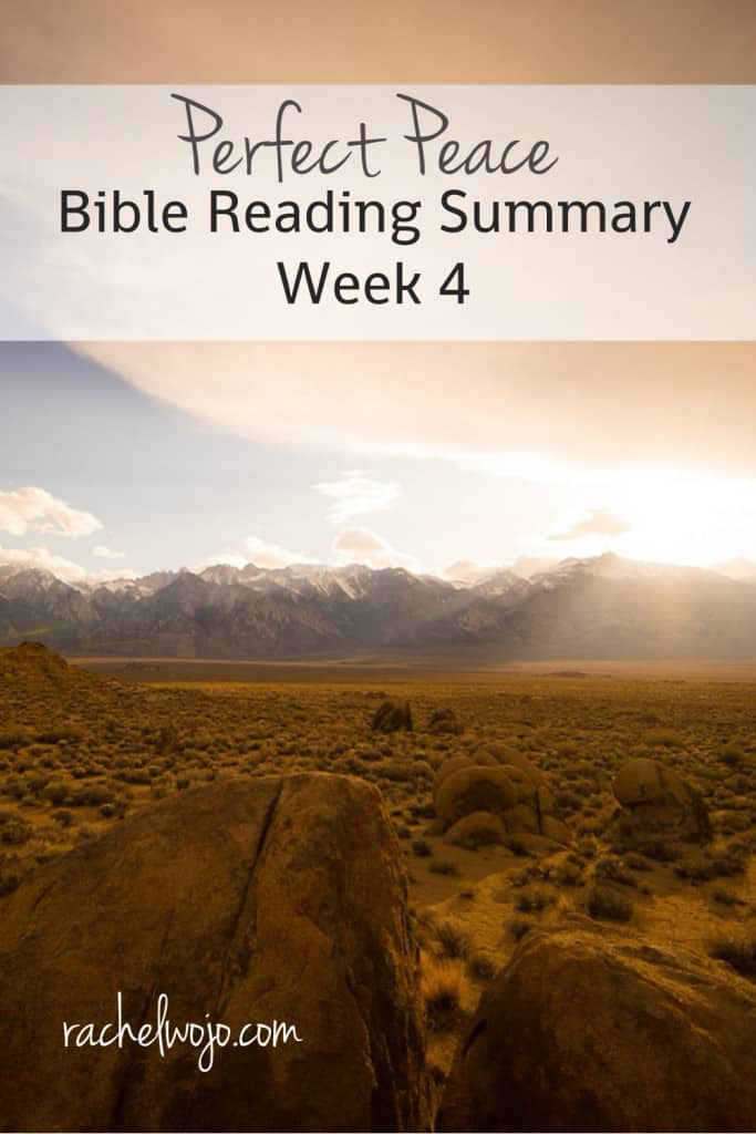 Perfect Peace Week 4 Bible reading summary: Have we focused on peace-promoting habits?
