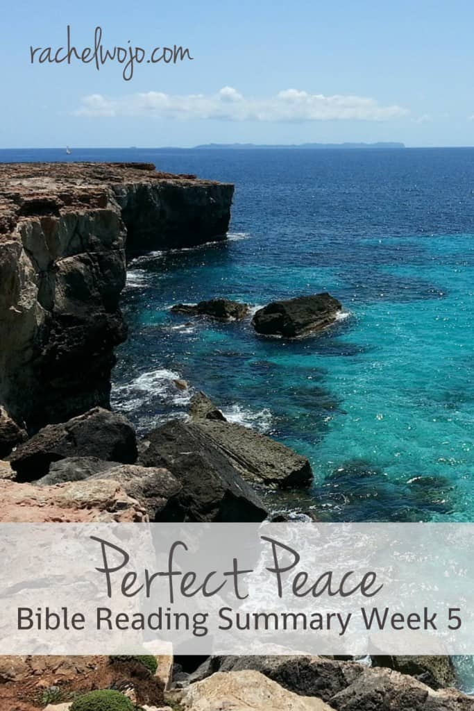 Perfect Peace Bible Reading Summary Week 5 : You can find the entire series of summaries and the Bible reading plan in this post! #perfectpeace #onemorestep #biblereading