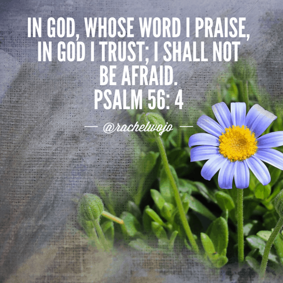 Psalm 56:4 #winoverworry #biblereading