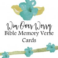 Win Over Worry Bible Memory Verse Cards