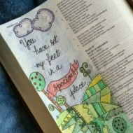 One More Step Bible Reading Summary Week 4