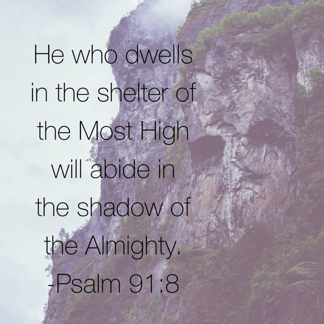 "The one who lives under the protection of the Most High dwells in the shadow of the Almighty. I will say to the Lord, ""my refuge and my fortress, my God, In whom I trust."" #inhispresence#biblereading"