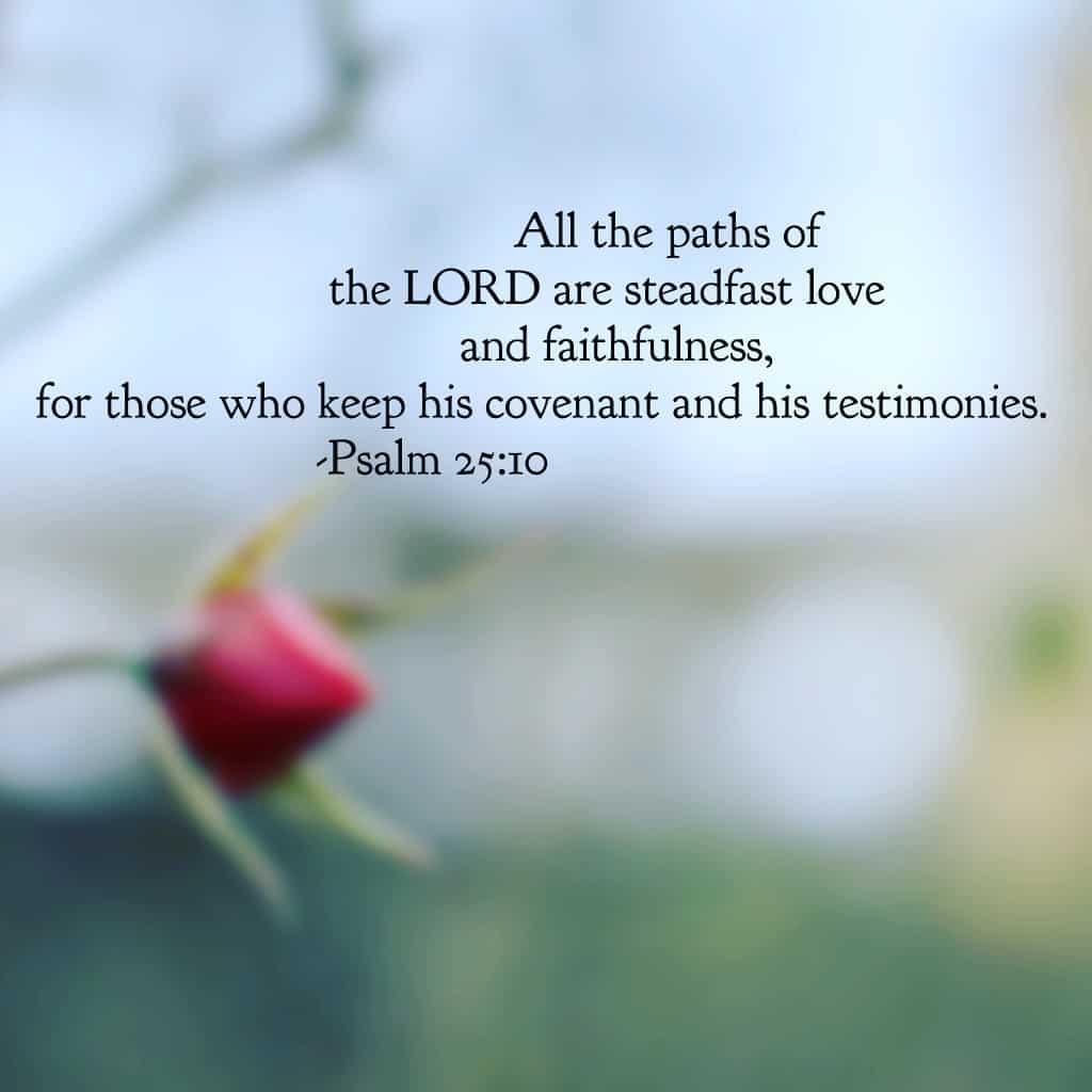 bible verse of true love