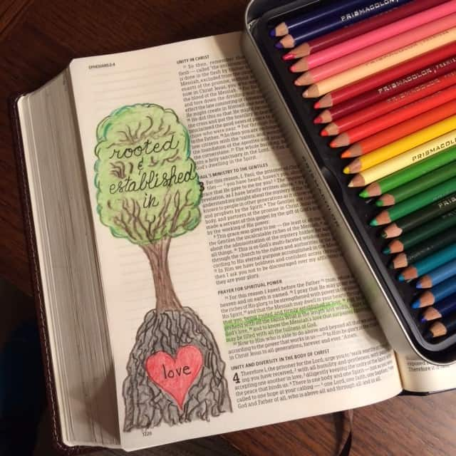 Rooted and established in love. Oh if we don't begin to grow love from the roots upward, what kind of foundation do we have? #truelove #biblejournaling#bibleartjournaling #illustratedfaith