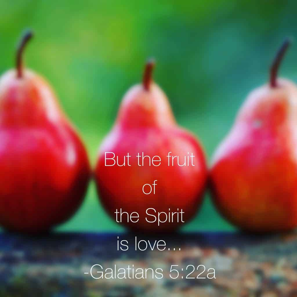 """Do you think it was purposeful that Paul listed love as the first evidence of the Holy Spirit living inside one's heart? I am thinking """"yes."""" May our fruit be evident today, Jesus! #truelove #biblereading"""