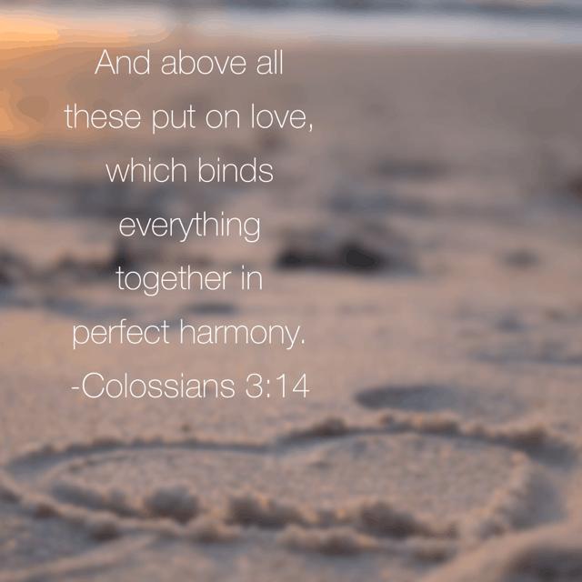 true love bible reading summary week 4