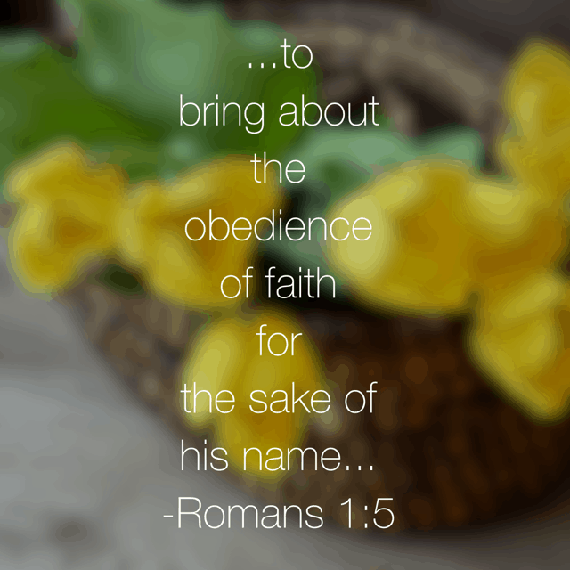 In Romans 1:1-7, Paul introduces himself to the church at Rome. He explains why he is writing this letter to them, which is the same reason he became an apostle of Jesus- obedience of faith. The NLT explains that Paul's desire was to not only believe, but to also obey, bringing glory to the name of Jesus. #genuinefaith is a high calling! I often think of faith as believing, but do I think of faith as obedience as well?#biblereading