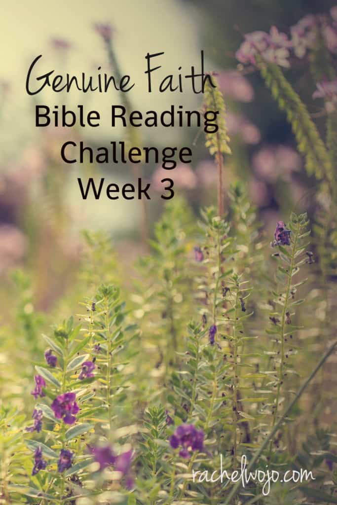 "Let's enjoy the Genuine Faith Bible Reading Challenge Summary Week 3, shall we?Jesus answered, ""I assure you, if you have faith and do not doubt."" He assures; we rest assured."