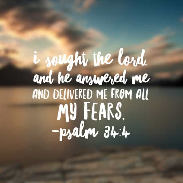 Why, oh why do we wait so long to seek the Lord? Is it that we enjoy hanging on to those fears? If fear is comfortable, then faith is distant. #nofear#biblereading Psalm 34:1-7