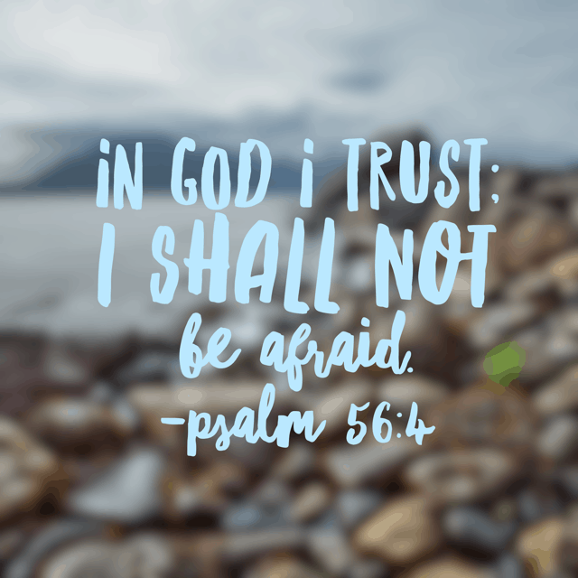 """When I am afraid, I put my trust in you."" I love that this verse explains ""I put."" Because that indicates it is a choice. I choose FAITH over FEAR. It is a choice I deliberately and intentionally make. Not something that just happens. Amen?"